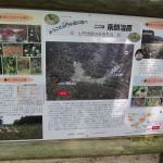 湿原の説明